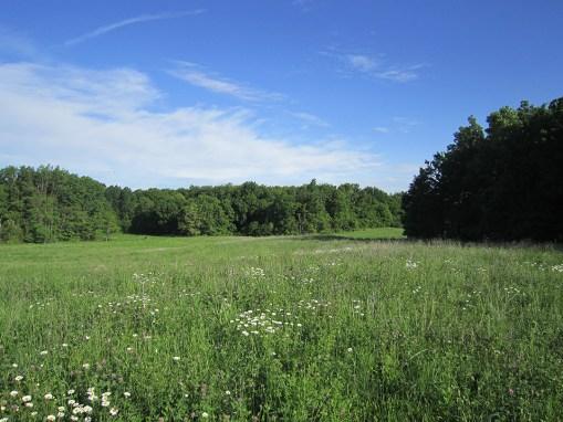 Heath Road Preserve