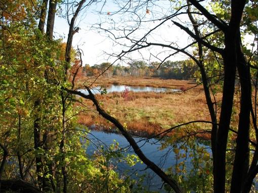 Hidden Marsh Sanctuary