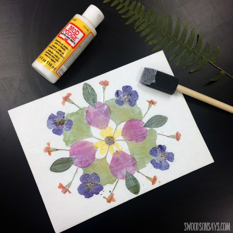 mod-podge-and-dried-flowers