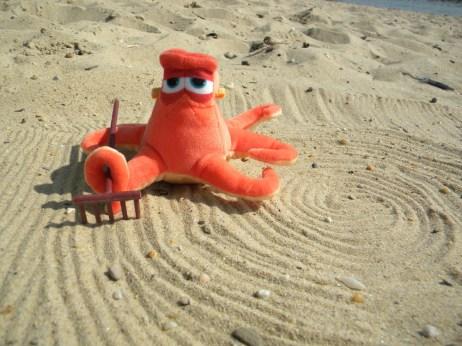 Hank creating a zen garden on the beach.