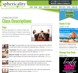 Sphericality Website Inside Page