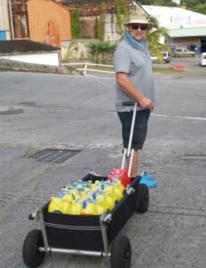 Der Mann mit dem Bollerwagen