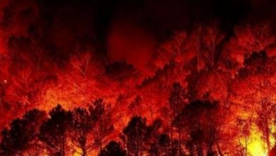 صورة الحرائق تمتد إلى ريف إدلب.. والدفاع المدني يعلن حالة الطوارئ