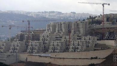 صورة الأزهر يدعو المجتمع الدولي إلى التصدي لتصرفات إسرائيل الاستعمارية