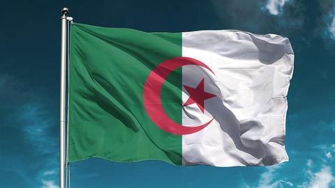 1604260310 9427947 853 480 4 2 - الجزائر.. تواصل فرز الأصوات في استفتاء تعديل الدستور