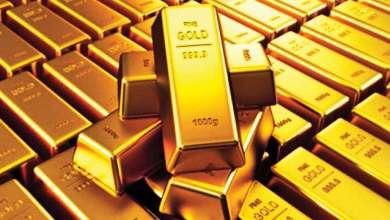 صورة هبوط أسعار الذهب في تركيا مع بداية الأسبوع