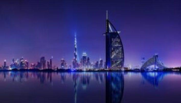 300x171 - مواطـ.ـنون ونشـ.ـطاء يرصـ.ـدون أحد أكثر الكائنات المرعـ.ـبة في مدينة دبي.. إليكم التفاصيل