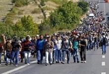 صورة بشرى سارة لجميع السوريين في العالم تطلقها الحكومة الألمانية وهذا ما جاء فيها