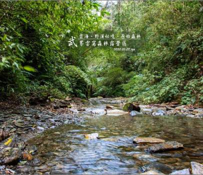 【南投 景觀營地】我的武界露營夢之2。雲窩森林露營區 | 野溪秘境、星空、日出、雲海、原始森林步道