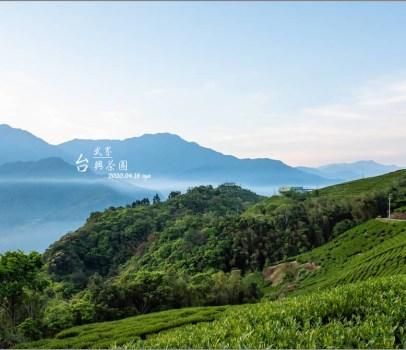 【南投 景觀營地】我的武界露營夢之3。武界台興茶園 | 壯闊雲海、大片的公共活動草地區