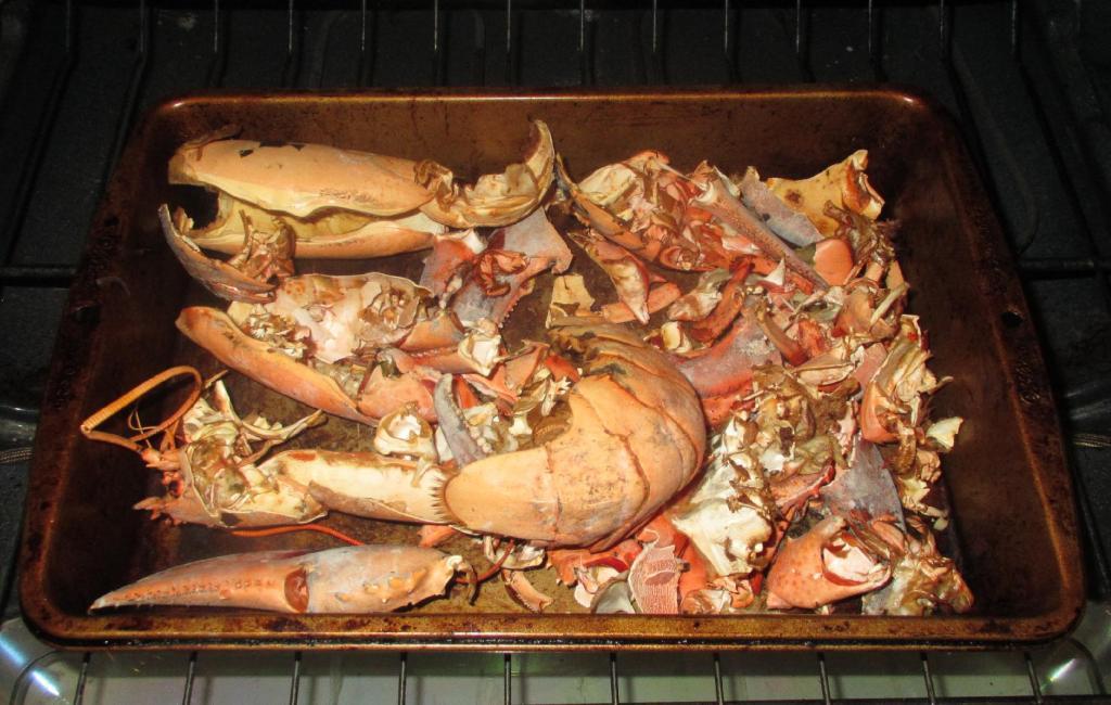 Roasted Lobster shells