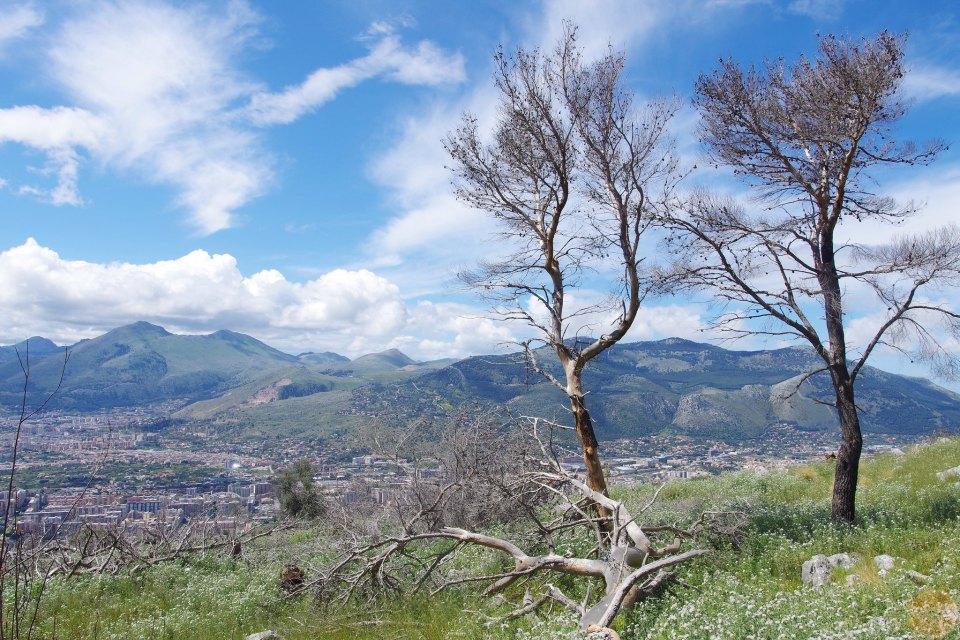 riserva monte pellegrino