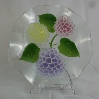 Multi Hydrangea