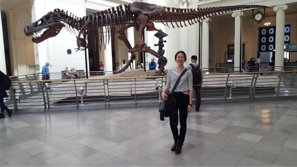 T-Rex Skeleton at the Field Museum during our road trip from Toronto to Chicago
