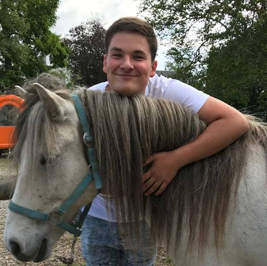 hest1