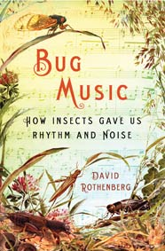 Bug Music by David Rothenberg cover