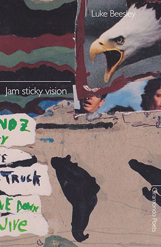 Jam Sticky Vision by Luke Beesley Book Cover