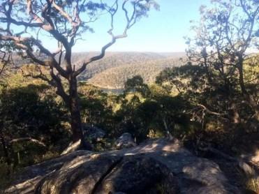 Mt Ku-ring-gai Track lookout