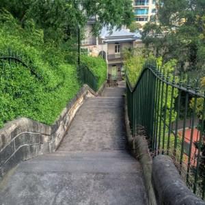 Agar Steps - 67