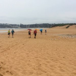 Beach walk near Dee Why lagoon
