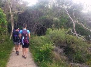 Bush Path down to Bilgola Beach