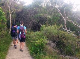 Bush Path down to Bilgola Beach