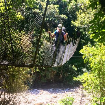 Heaphy Track Suspension Bridge