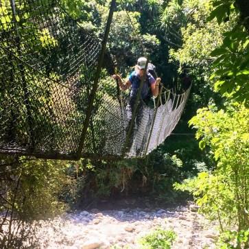 Heaphy Track Suspension Bridge