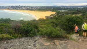 Path on headland from Dee Why to Curl Curl