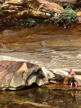 Rob Walker Rock Pool rocks