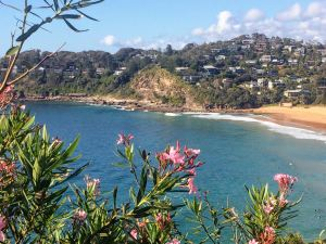 Whale Beach view to rock pool