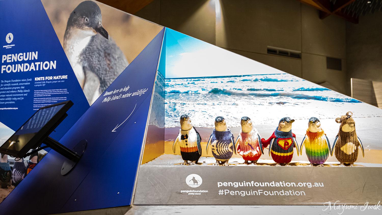 メルボルンのフィリップ島でPENGUIN PARADE(ペンギンパレード) | MELBOURNE
