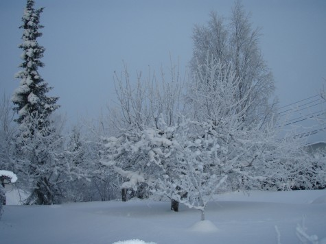 Slutt på snø og kulde! Nå er det sand og varme!
