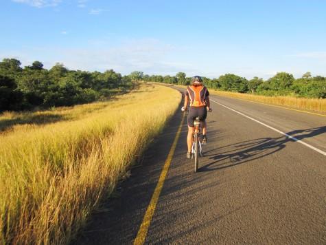 Slik ser det ut langs veiene i Botswana, mil etter mil!