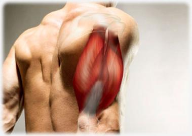 állítsa le a vállízület fájdalmát