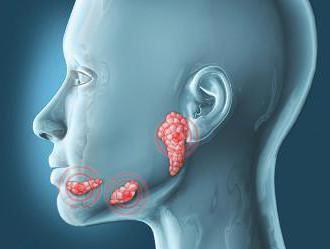 Կորոնավիրուսային վարակի տարածման աղբյուրը թքագեղձերն են, ահա թե ինչու է SARS-CoV-2-ն այդքան վարակիչ