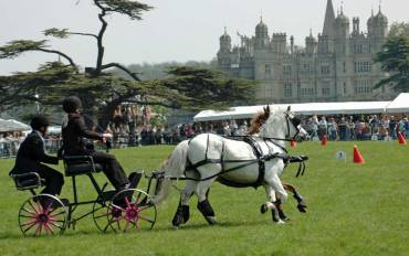 Carriage driving at Burghley House.
