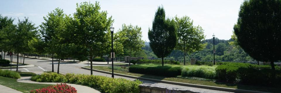 landscaping-careers