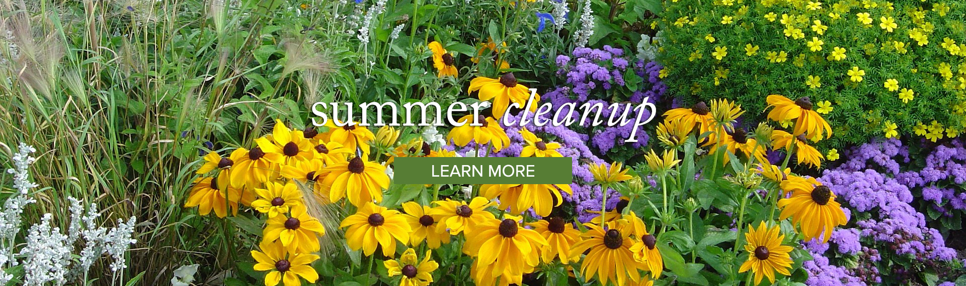 Summer_LEARN