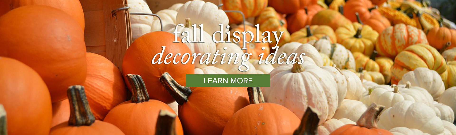 decorating_LEARN