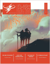 Flash Fiction Online February 2020