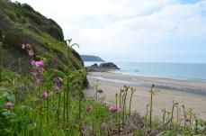 Küste Wales