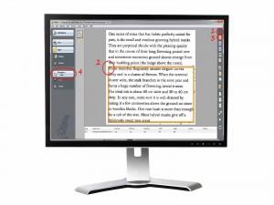 Πως αντιγράφουμε ένα βιβλίο στον υπολογιστή