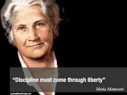 """""""Discipline must come through liberty"""" M.Montessori"""