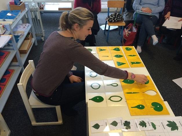 Montessori botanique
