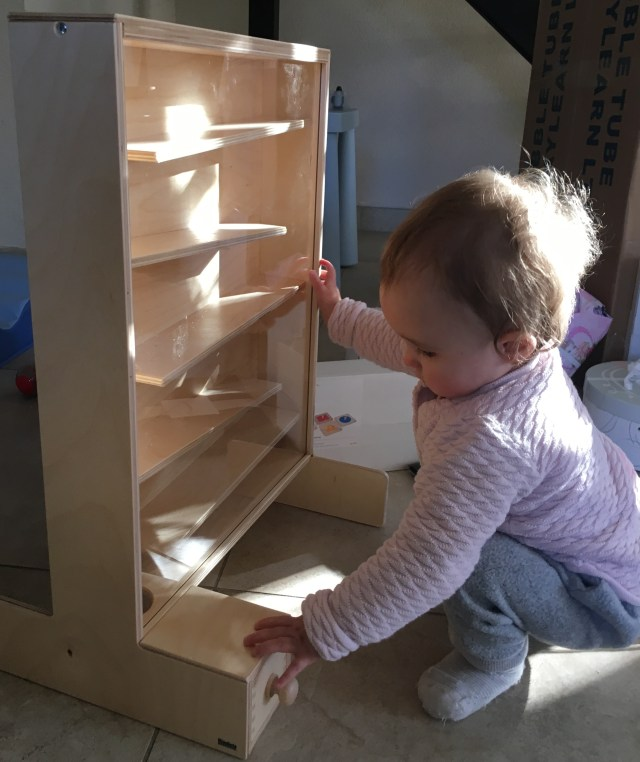 Montessori intelligence