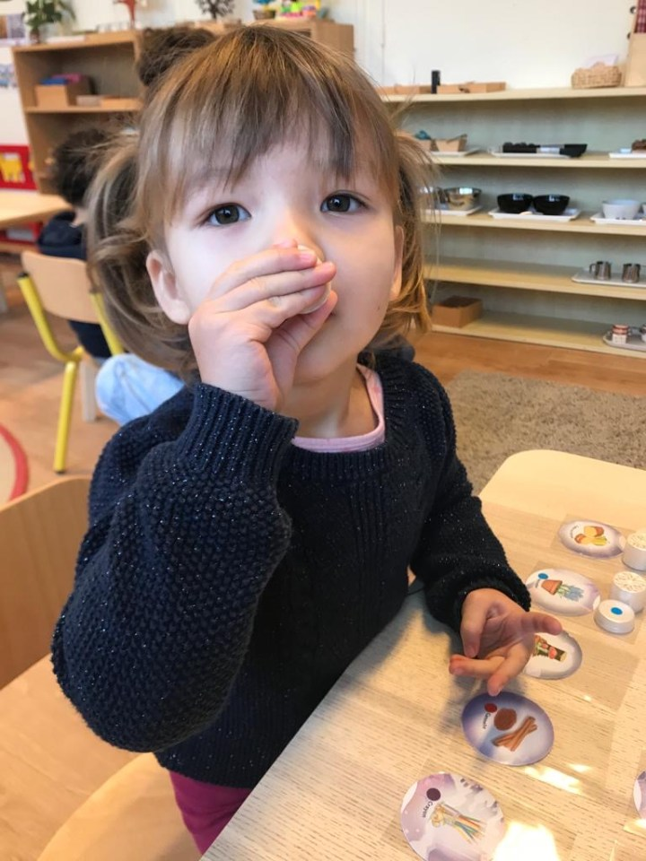 Le développement sensoriel