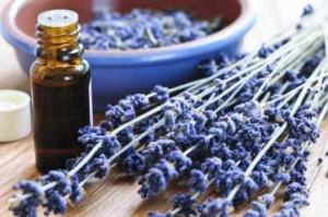 aromatherapie-lavande