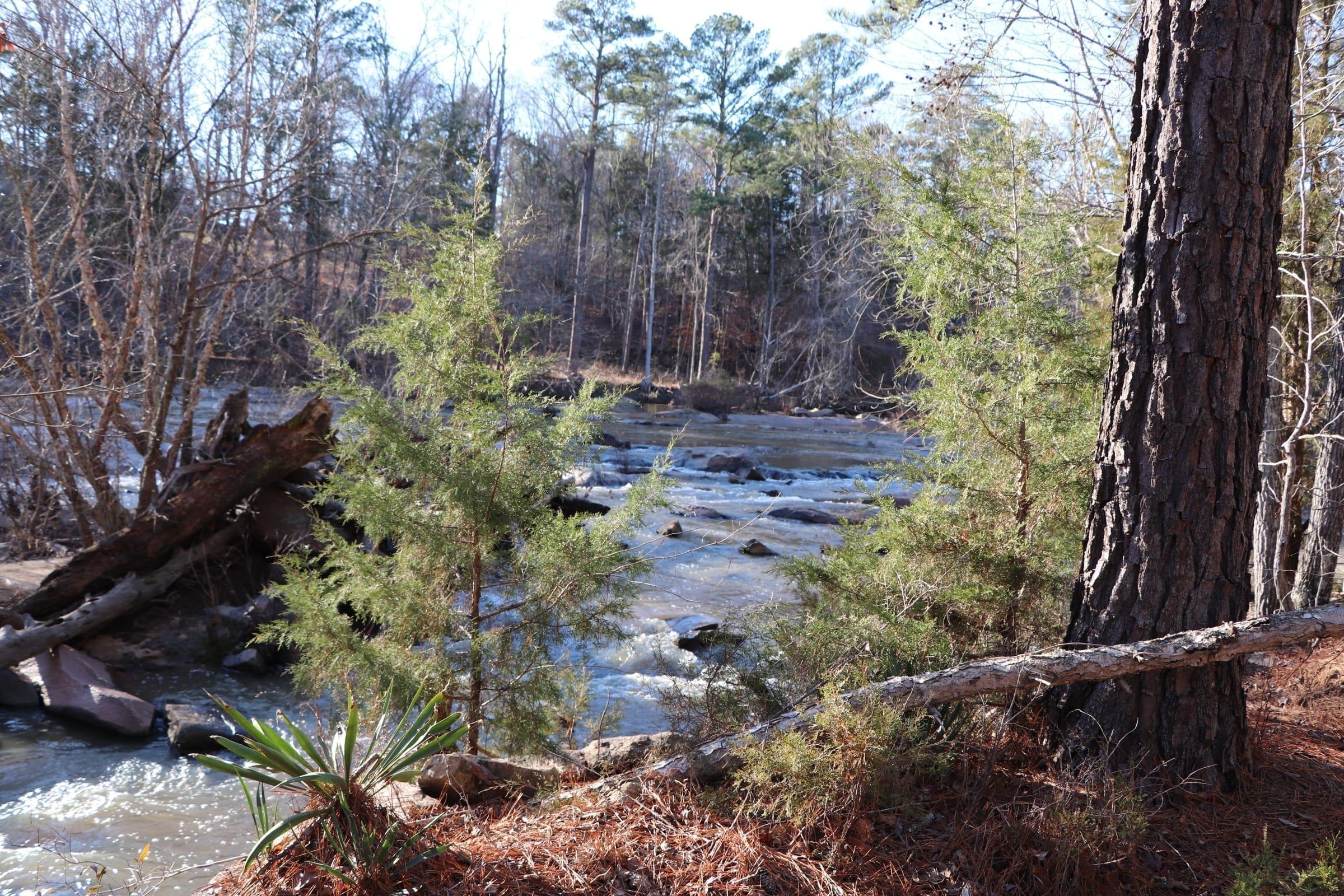 Rocky Creek Trail