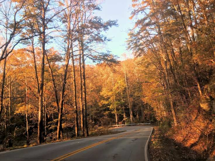 Can't beat the beautiful fall colors in SC!